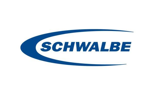 Schwalbe - Lindenholz