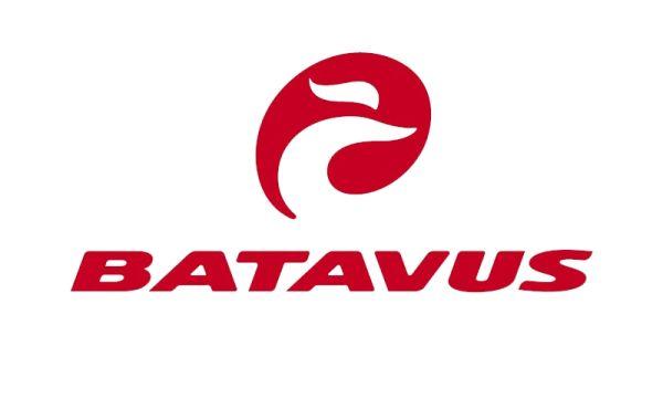 Batavus - Lindenholz